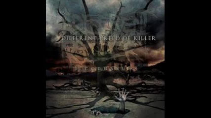 A Different Breed Of Killer - The Accidentist