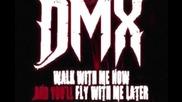 Dmx - Get Your Money Up Track # 10 [2011]