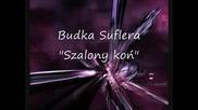 Budka Suflera Szalony kon