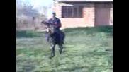 иван от гроздево язди магаре