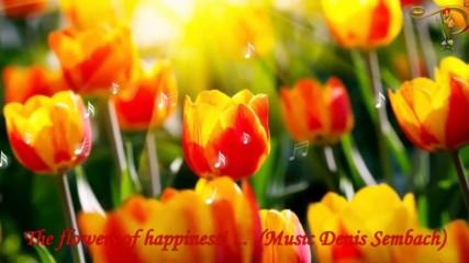 Цветята на щастието! ... (music Denis Sembach)