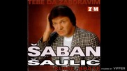 Saban Saulic - Tebe da zaboravim - (Audio 1998)