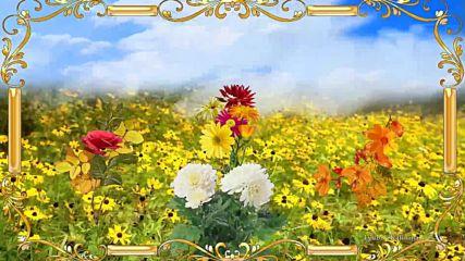 Цветы Осени! Музыкальная открытка