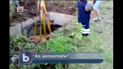 Кон пропадна в шахта