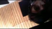 Louder Than Words Клейтън си дрънка на барабаните ( 05 - 05 2009 )