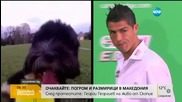 Футболистът Роналдо вече си има конкуренция