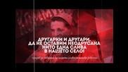 VIP Brother 2014: Другарки и другари...