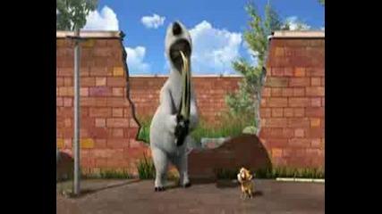 Bernard - The Little Dog
