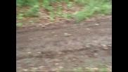 pit bike crooss 2