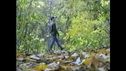 Стекловата - Просто Есен