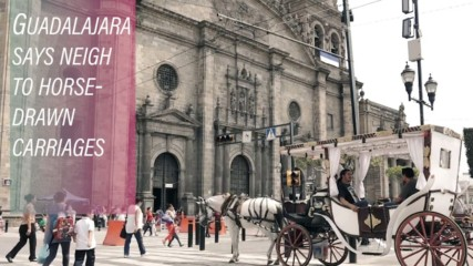 Electric horses are taking the reigns in Guadalajara