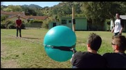 Jackass 3d Trailer