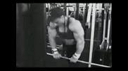 Markus Ruhl Trening Triceps
