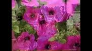 Mirsada i jarani - Subota je dan vjencanja moga - (Official video 2005)