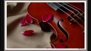 Condori - Sedam Violina