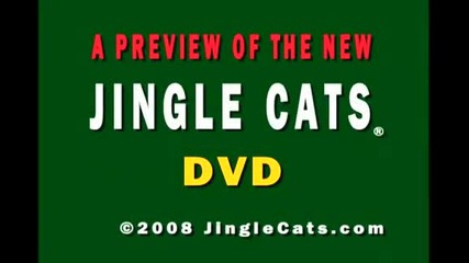 Jingle Cats Silent Night