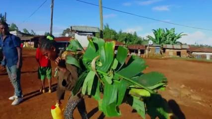 Историята на племето Дорзе (