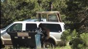 Мъж изплашва черна мечка