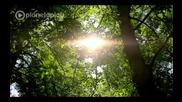 Galin - Sluchi se official video 2012