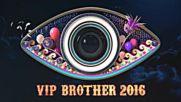 VIP Brother - тази вечер от 20:00 часа по NOVA