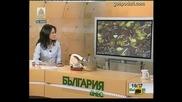Кенефи Видео Господари на ефира