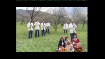 Канарите Хей Млади Момко