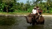 """Разходка със слон (""""Без багаж"""" еп.92 трейлър)"""