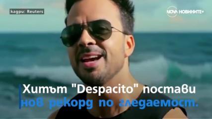В Малта валя дъжд от… риба и пореден рекорд за ''Despacito''