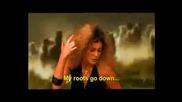Shakira Parody 3 - Big Bite-Soullord