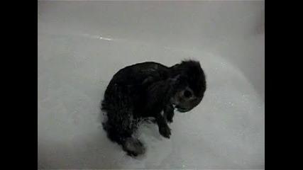 Първата баня на Зайко :d