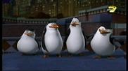 Пингвините От Мадагаскар С02 Е11 Бг Аудио Цял Епизод
