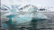 Shocker: Scientists Amazed to Find Fish Live Beneath Antarctica