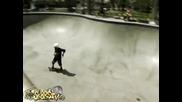Culver City Skatepark - The Locals