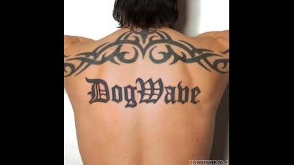 Dogwave - Push
