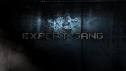 Intro Expert Gang