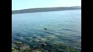 Как се лови риба във Варна