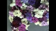 Как да си изплетем елегантен шал от цветчета вплетени едно в друго