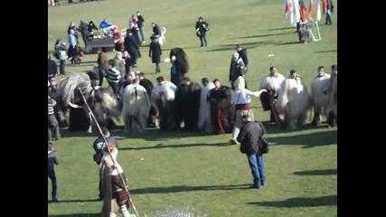 Крупник - повече от век неугасваща традиция / Симитлия - Древната земя на кукерите 2014