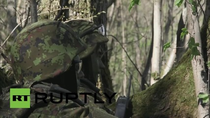 Estonia: NATO hold joint 'Hedgehog' military drills in Johvi
