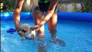 Плуващо Чоче