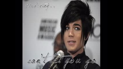 Adam Lambert - - Cant Let You Go . . ; . .