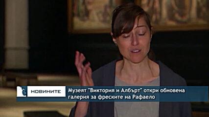"""Музеят """"Виктория и Албърт"""" откри обновена галерия за фреските на Рафаело"""