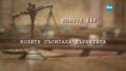 Съдебен спор - Епизод 448 - Козите съсипаха дърветата (18.03.2017)