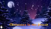 Коледа в гората ...