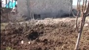 Azerbaijan: Footage shows Azerbaijani troops killed in Nagorno-Karabakh clashes *GRAPHIC*