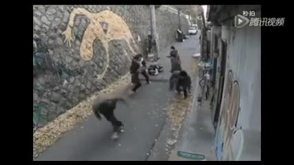 6 момчета закачат едно момиче, ... и става въргал!