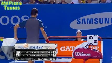 Димитров - Андерсън финалът на А Т Р Acapulco 2014