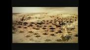 Nadiya - Signes (6 Mondini Remix)