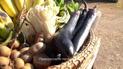 Гордън Рамзи: Кулинарният изследовател - съставки от Лаос