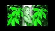 # Hit # Djena - Po - Poleka (ft Lubo) # Hg #.wmv